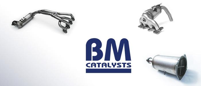 bm-catalyst-strona